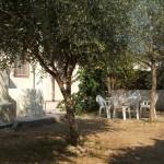 Appartamento Rosa: Giardino mediterraneo con alberi di ulivo